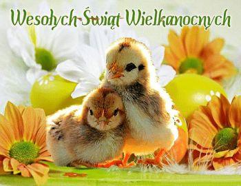 Z okazji Świąt Wielkanocnych składamy najserdeczniejsze życzenia:  dużo zdrowia, radości