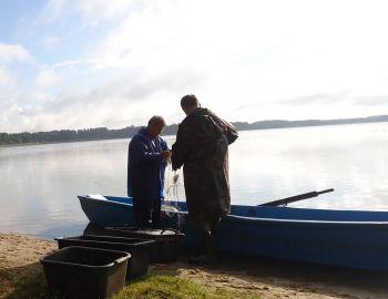 Co się wydarzyło nad jeziorem Ostrowąs (Plebanka) - czyli dlaczego i w jaki sposób prowadzimy  inwentaryzacje stanu ichtiofauny użytkowanych wód