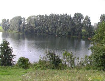 Jezioro Czarownica (Borzymińskie) dostępne dla wędkarzy Okręgu Mazowieckiego PZW